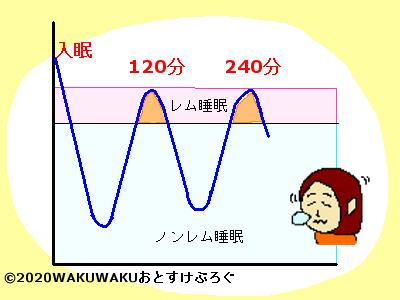 レム睡眠ノンレム睡眠グラフ